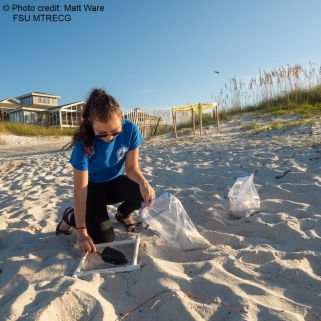 Emily sand sample
