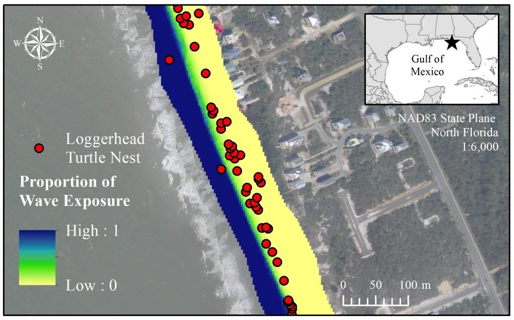 Map of wave exposure along a portion of the St Joseph Peninsula shoreline