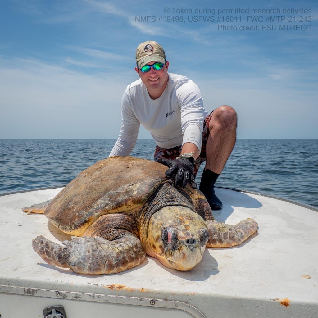 Dr. Matt Ware with a loggerhead sea turtle